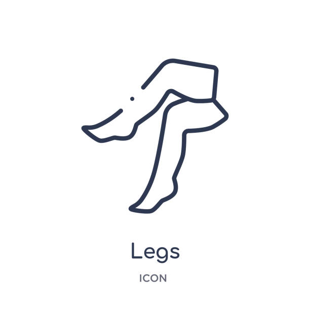 linear legs icon from beauty outline collection. thin line legs vector isolated on white background. legs trendy illustration - ludzka noga stock illustrations