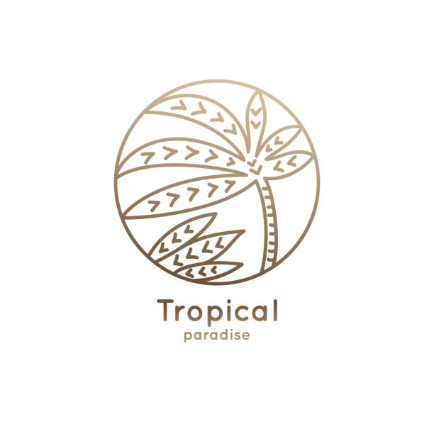 liniowa palma z logo w kółku - jungle stock illustrations