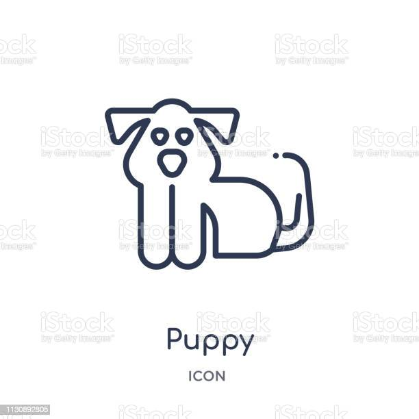 Linear puppy icon from animals outline collection thin line puppy vector id1130892805?b=1&k=6&m=1130892805&s=612x612&h=lehkm5ynhhpjrdzooeutxncweob7jw0p4jngkefptea=