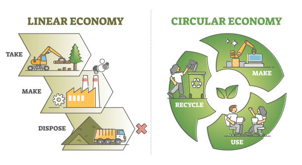 Linear vs circular economy comparison from recycling aspect outline diagram vector art illustration