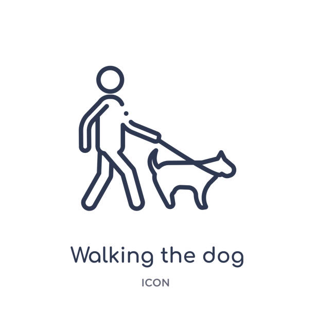 linear walking the dog icon from behavior outline collection. thin line walking the dog vector isolated on white background. walking the dog trendy illustration - ходьба stock illustrations