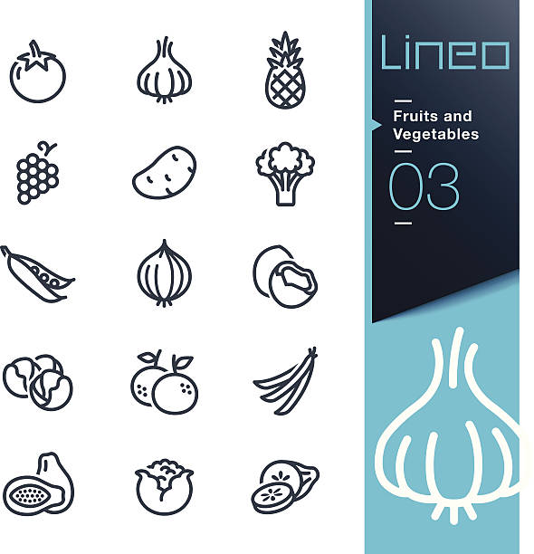 lineo - fruits and vegetables outline icons - onion stock illustrations