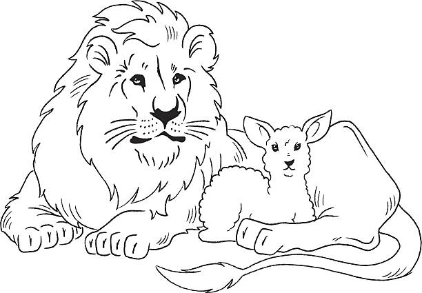 Royalty Free Lion Lamb Clip Art Vector Images Illustrations Istock