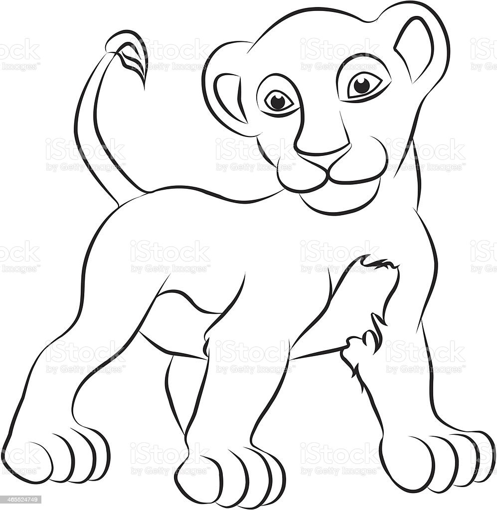 Lion Cub Stock Illustration - Download Image Now - iStock