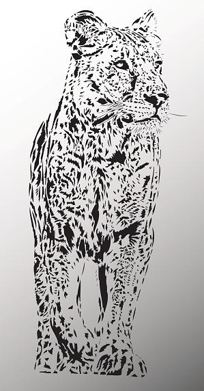 Lion female illustration