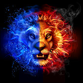 Lion from fire and water