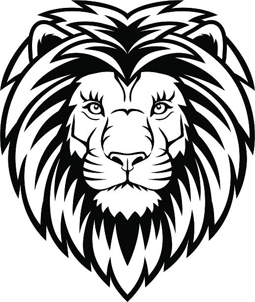 Best Lion Face Illustrations Royalty Free Vector Graphics