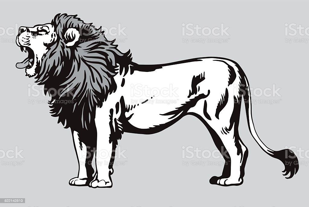 Line Drawing Lion Head : Mean lion head illustrations creative market