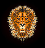 Lion head with mane - vector sketch style illustration
