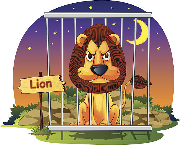 illustrations, cliparts, dessins animés et icônes de lion en cage - cage animal nuit