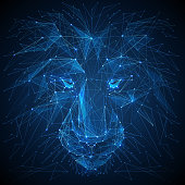 Lion low poly blue vector illustration