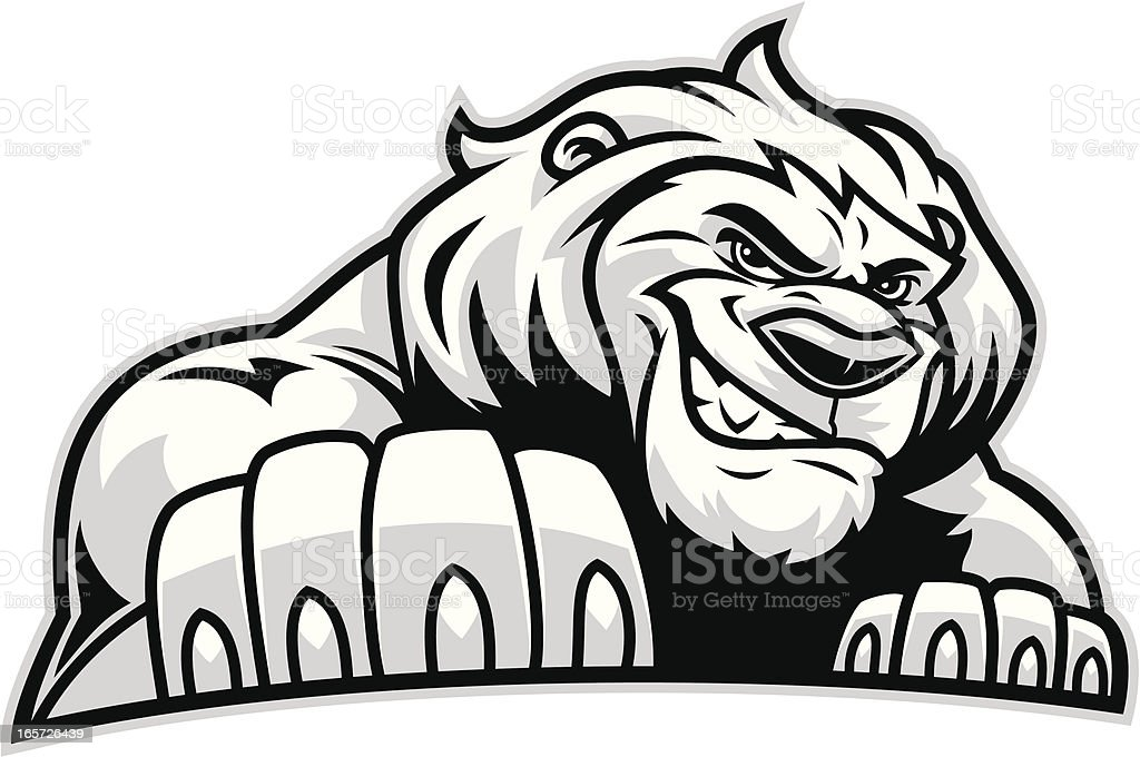 Lion Stance royalty-free lion stance stock vector art & more images of animal