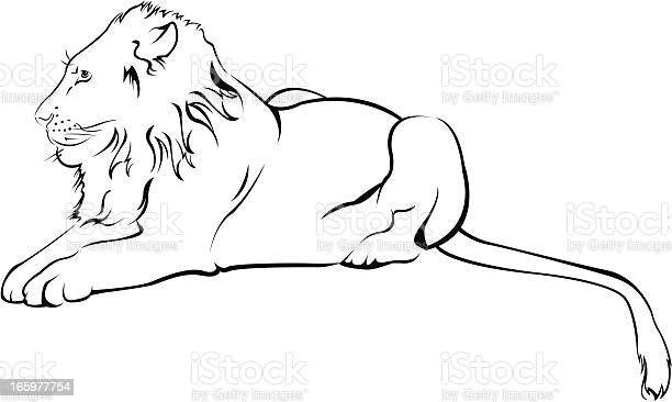 Lion vector id165977754?b=1&k=6&m=165977754&s=612x612&h=cycpawrmfk0bozx0tyfuy0oonr1nxkm9k3czgb4acge=