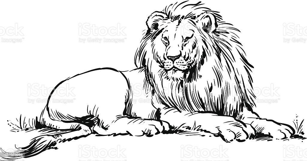 Lion vector art illustration