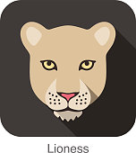 Lioness, Cat breed face cartoon flat icon design