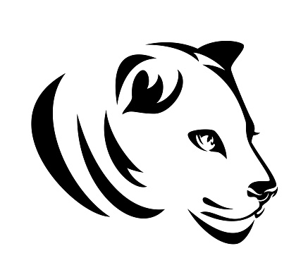 lioness profile head black and white vector portrait