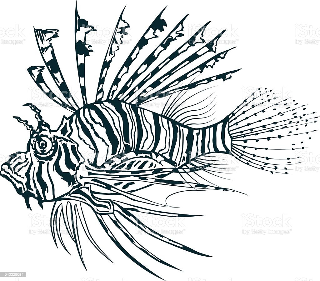 Lionfish Vector Image - Awesome Graphic Library •