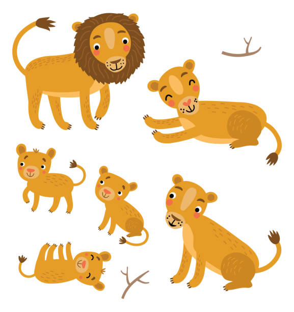 Lions family vector set Lions family vector set lion cub stock illustrations