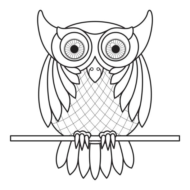 little athene owl line art - black and white owl stock illustrations, clip art, cartoons, & icons