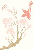Vector illustration of a little bird, magnolia & a dragonfly.