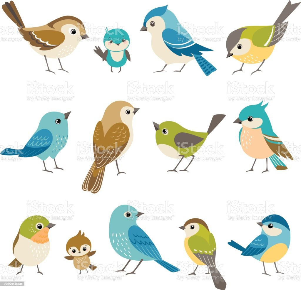 Little birds vector art illustration
