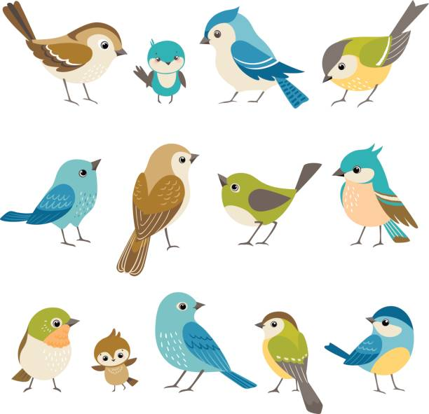 little birds - birds stock illustrations