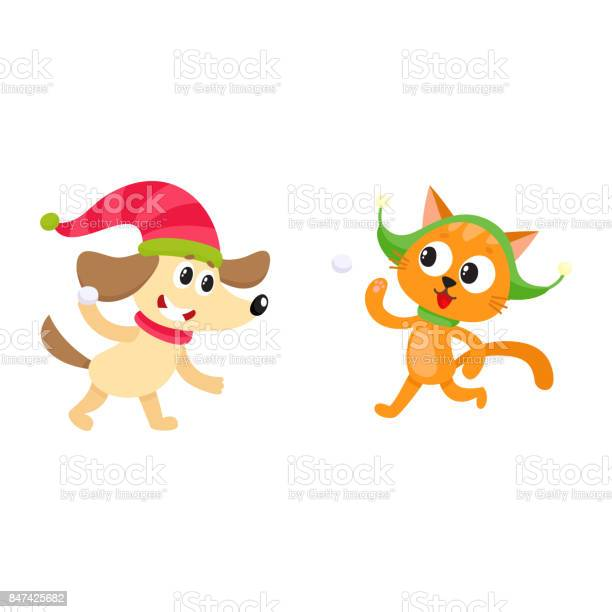 Little cat and dog characters playing snowballs vector id847425682?b=1&k=6&m=847425682&s=612x612&h=zgt1vyuegalwhpjubub6pp7cwa9jof4gwpttqr8ltvs=
