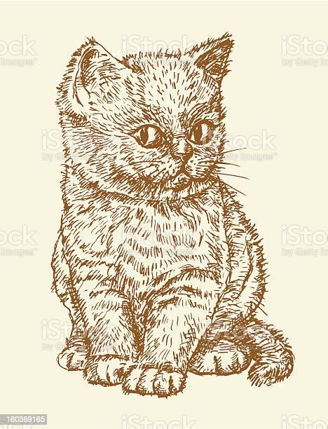 Little cat vector id160369165?b=1&k=6&m=160369165&s=612x612&h=gqlv lmm6n3o7vufuaihhimolny0gak onpoj93zeu4=