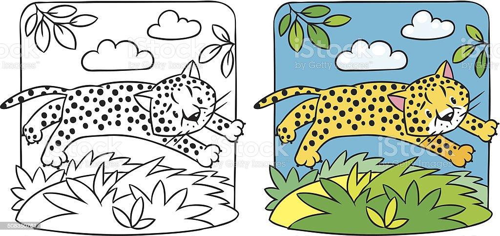 Little Cheetah O Jaguar Libro Para Colorear - Arte vectorial de ...