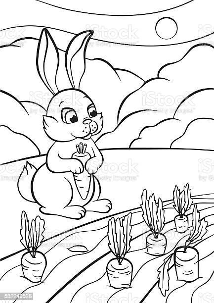 Little cute rabbit stands and holds carrot in the hands vector id532249526?b=1&k=6&m=532249526&s=612x612&h=niyqoxjkbwt7wzlzqe1fdgb0kztybegcn3nidmhg1rg=