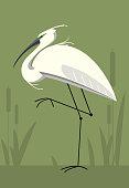 Little Egret on green background, minimalistic image