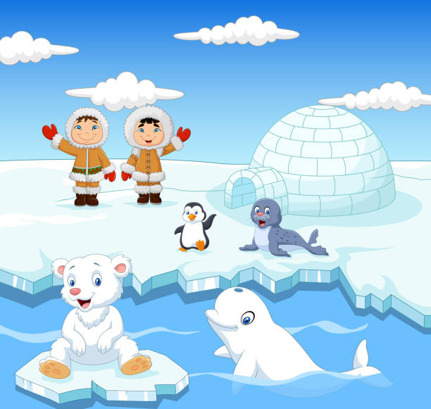 Little Eskimo kids with arctic animals and igloo house Illustration of Little Eskimo kids with arctic animals and igloo house beluga whale stock illustrations