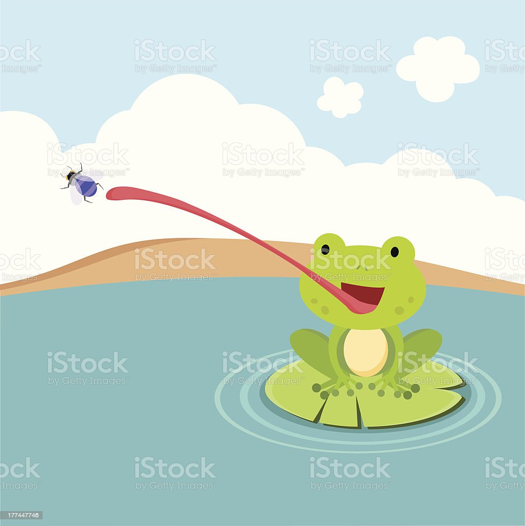 Little Frog Catching Fly Stock Illustration Download Image Now Istock