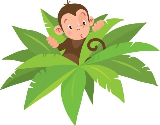 kleine lustiger monkey - neuweltaffen und hundsaffen stock-grafiken, -clipart, -cartoons und -symbole