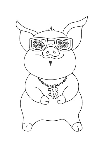Little piggy in sunglasses with a chain around his neck and a bitcoin pendant.