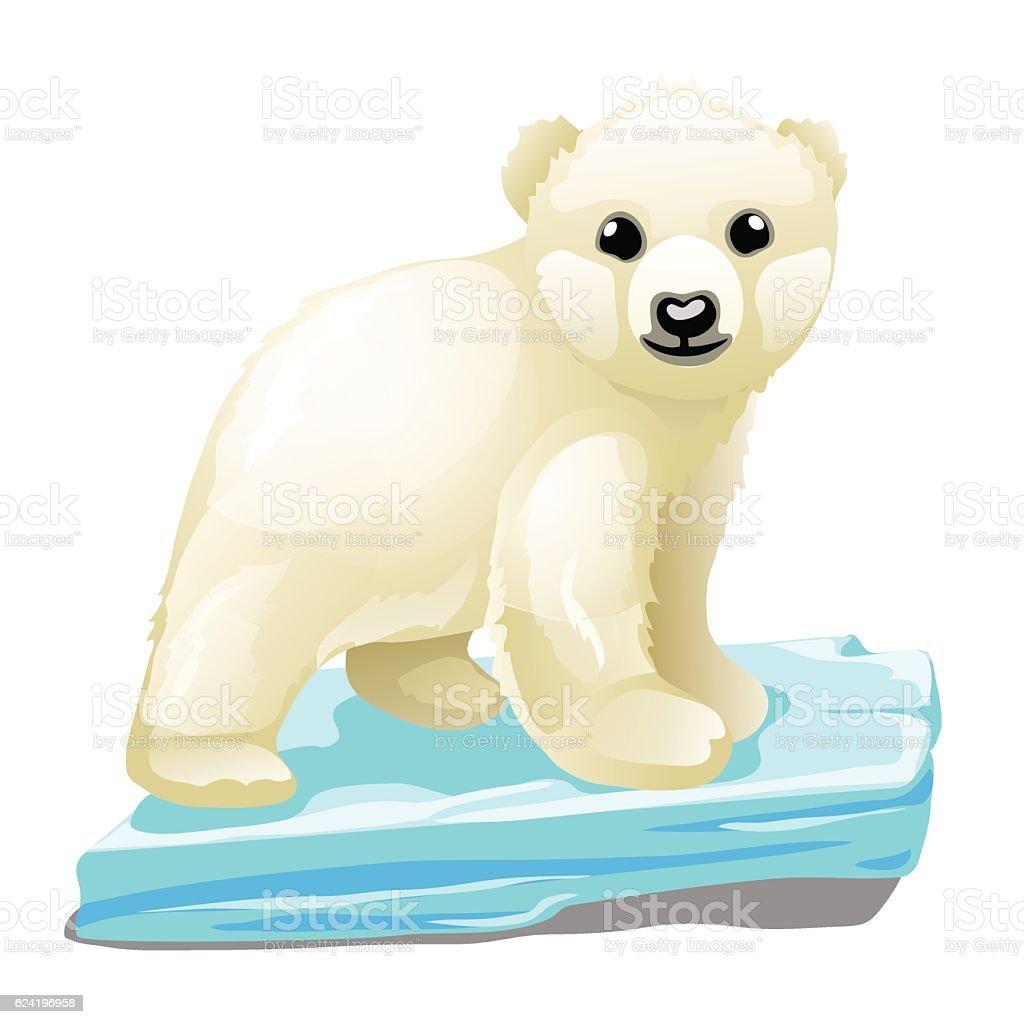 Little polar bear on ice floe, animal isolated vector art illustration