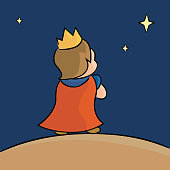 little prince in the starry sky
