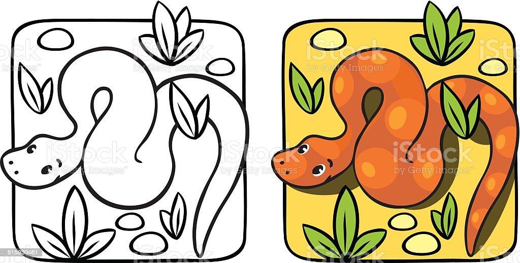 Little Serpente Libro Da Colorare Immagini Vettoriali Stock E