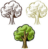 A little simple tree drawn, in 3 different styles