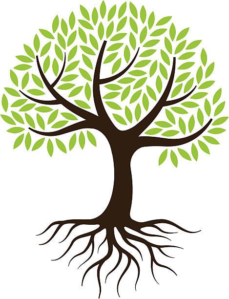 Little tree illustration with roots. vector art illustration