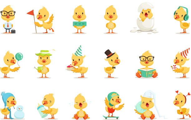 Little Yellow Duck Chick Different Emotions And Situations Set Of Cute Emoji Illustrations Little Yellow Duck Chick Different Emotions And Situations Set Of Cute Emoji Illustrations. Humanized Wild Baby Bird Activities Cartoon Vector Stickers. duckling stock illustrations