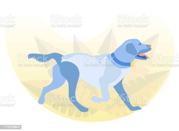 Lively labrador retriever walking in park or woods vector id1173758841?b=1&k=6&m=1173758841&s=612x612&h=2c dmtr1ymplmglnw1t8h54w8gr2 o6cpd468ouuroq=
