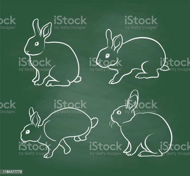 Lively rabbits chalkboard vector id1184477773?b=1&k=6&m=1184477773&s=612x612&h=ubkxtmrpcoezyfv3i6xo77trzshkmrkapddnejc1jve=