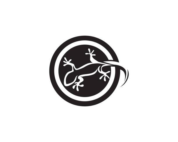 lizard chameleon gecko silhouette black vector - gecko stock illustrations, clip art, cartoons, & icons