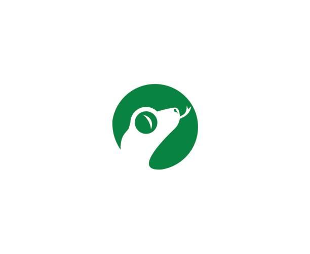 lizard icon - gecko stock illustrations, clip art, cartoons, & icons