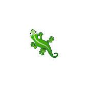 Lizard Isolated Realistic Vector Icon. Green Anole, Iguana Illustration Emoji, Emoticon, Icon