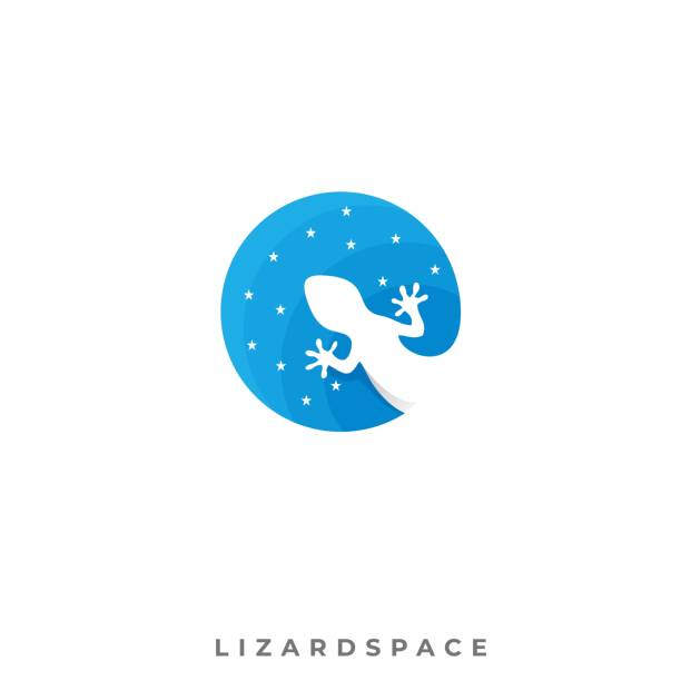 Lizard Space Illustration Vector Template Lizard Space Illustration Vector Template. Can be used for Creative Industry, Multimedia, entertainment, Educations, Shop, and any related business. amphibians stock illustrations