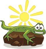Lizard warming up in the sun