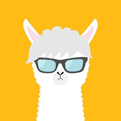 Llama alpaca animal wearing sun glassess. Cute cartoon funny kawaii character. Fluffy hair fur. Childish baby collection. T-shirt, greeting card, poster print. Flat design. Yellow background.