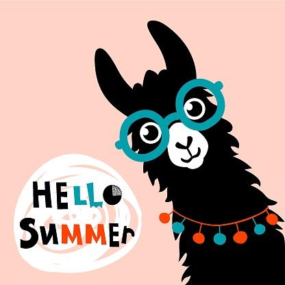 Llama Alpaca. Hello Summer card. Vector illustration - Vector